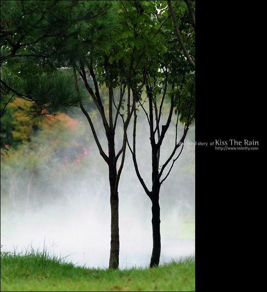 Kiss The Rain 雨的印记 钢琴
