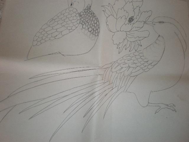 兰花用铅笔画的图片